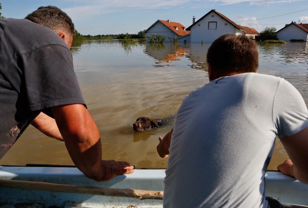 http://www.boston.com/bigpicture/2014/05/balkans_flooding.html