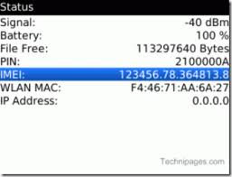 Imei, BlackBerry Curve 9300