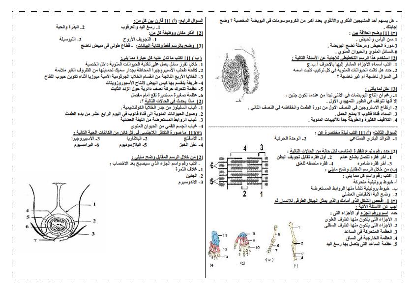 امتحان دعامة وتكاثر ممتاز - احياء_ 2015 25_002