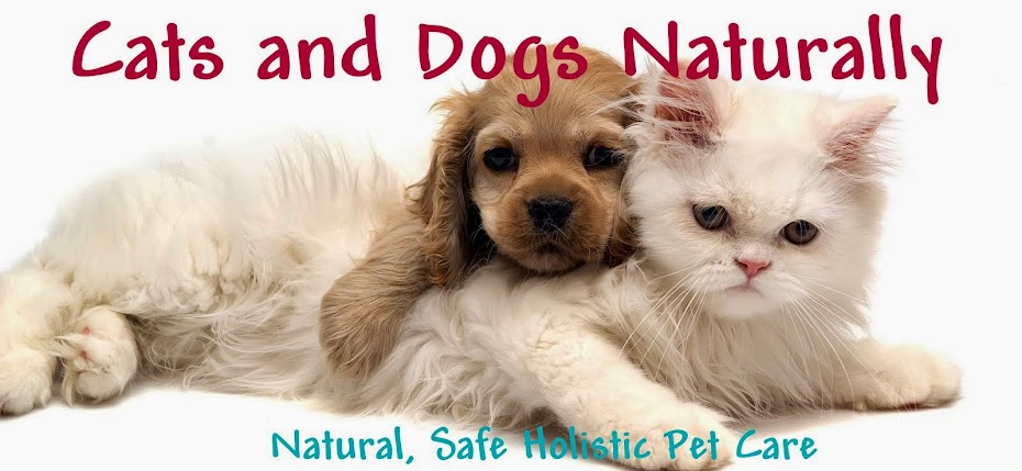 Cats and Dogs Naturally