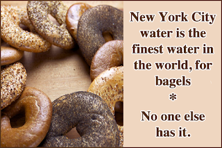 1800nycbagels