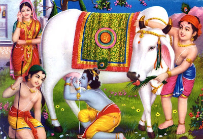 Indian God Wallpapers God Wallpapers World Wide Indian Cow