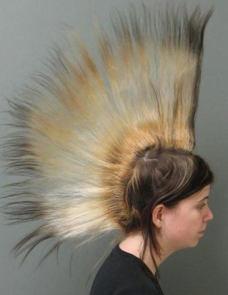 Amazing Hairstyles For Christmas Day Amazing Information