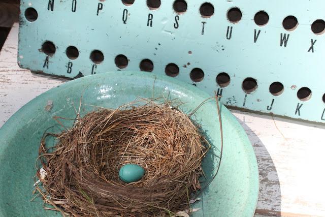 52 FLEA: Robin's Egg Blue
