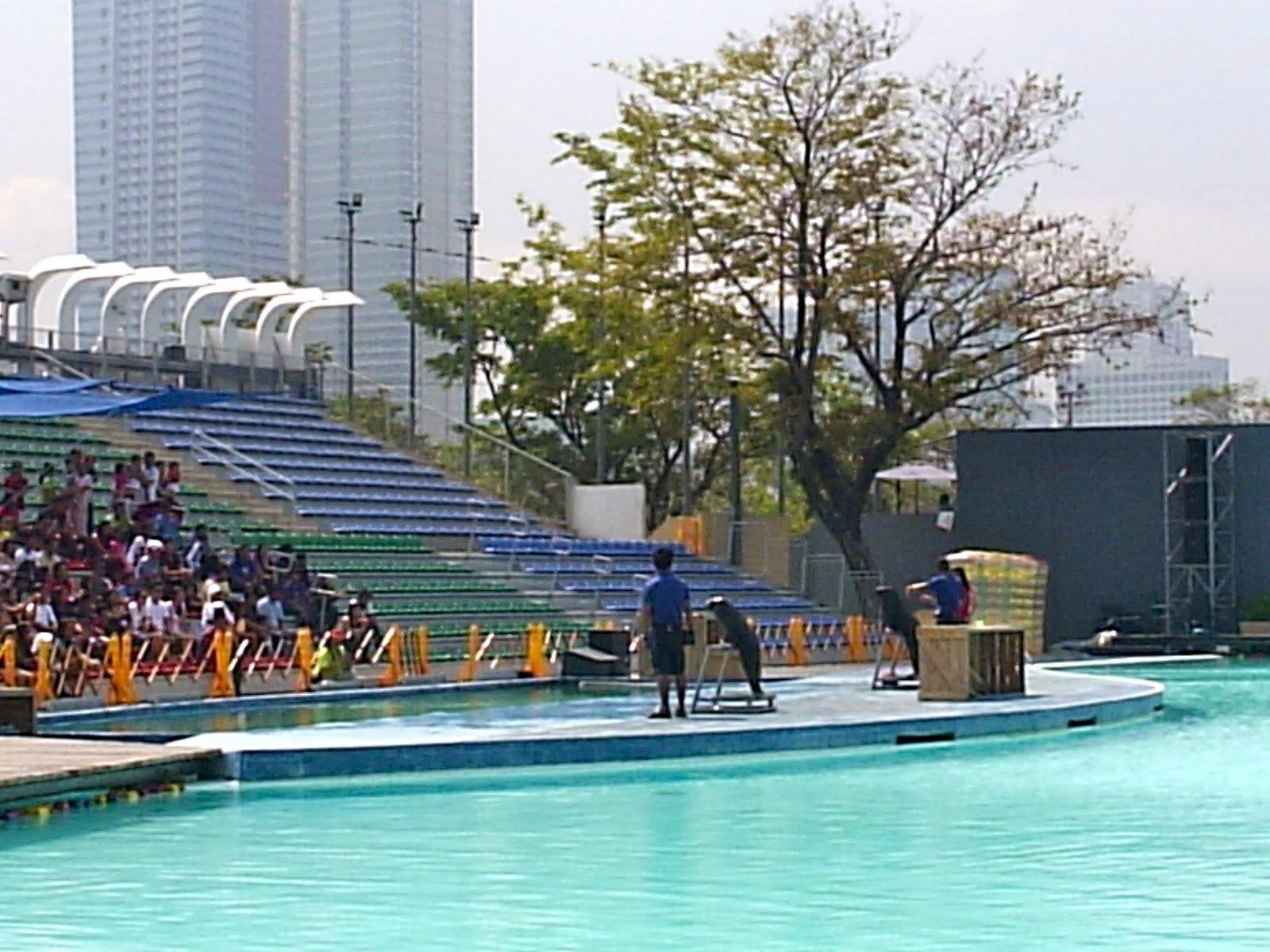 Purple Plum Fairy A Day Of Bonding Manila Ocean Park 39 S Swimming And Fun Pools