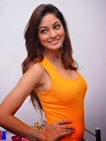 Actress Shilpi Sharma Hot Photo shoot-cover-photo