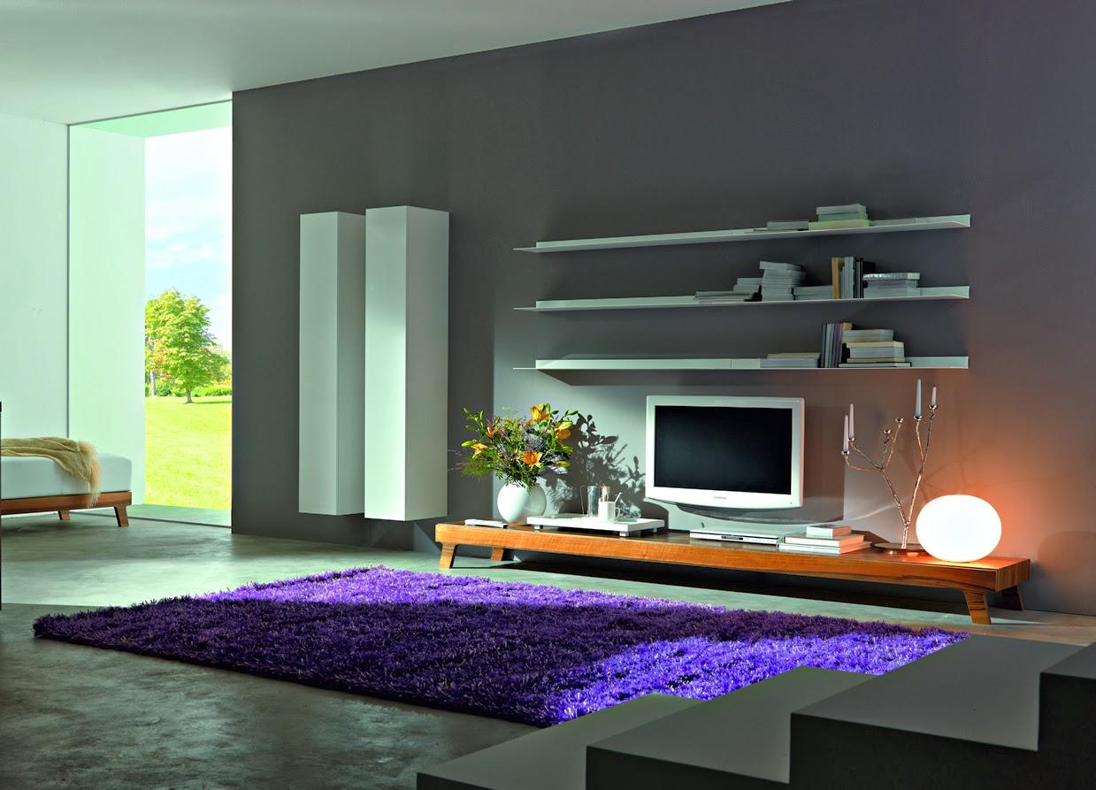 Epiplonet for Modern tv shelf for living room