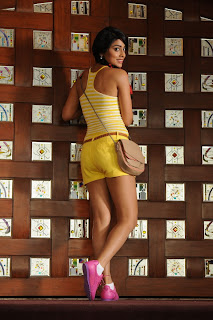 Shriya Saran Latest  Picture Shoot Gallery in Shorts  0003.jpg