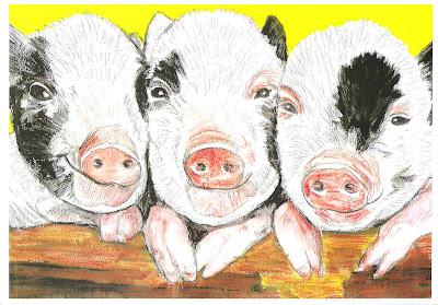 Three spotty black piggies pic