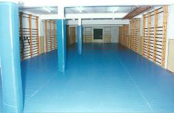 antigua sala azul