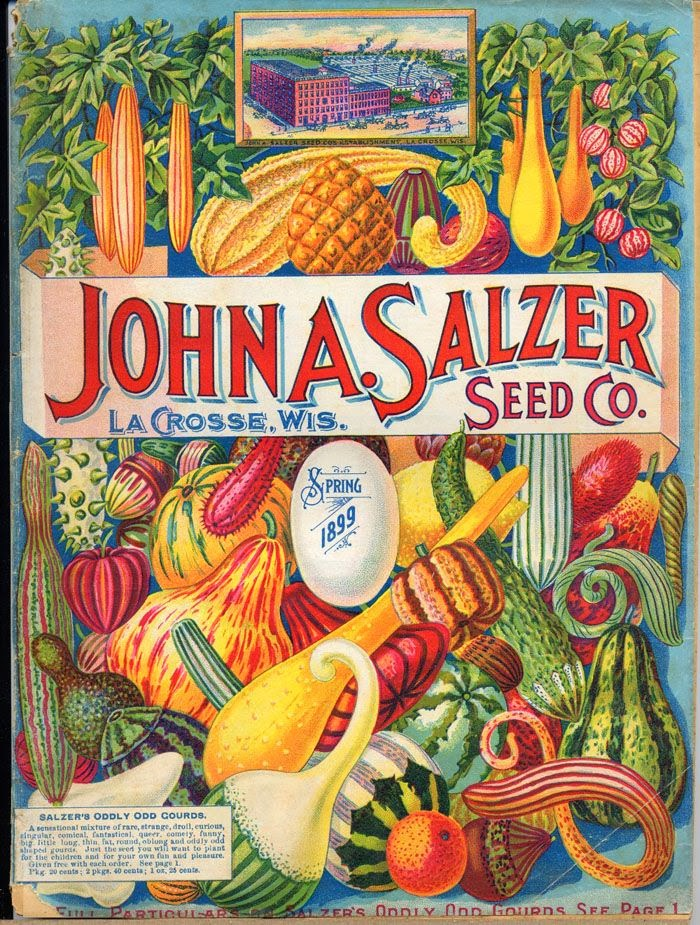 Vintage Seed Packet Art New House New Home