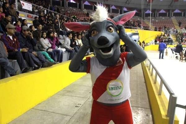 Image Result For Brasil Vs Peru En Vivo Ver Online