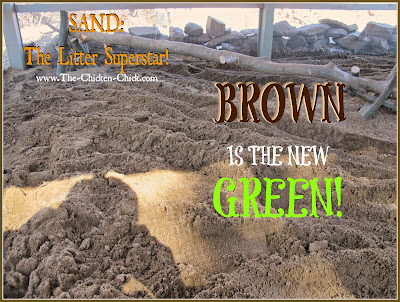 Sand is an eco-friendly chicken coop litter choice; sand can be removed from the coop, washed, dried and reused