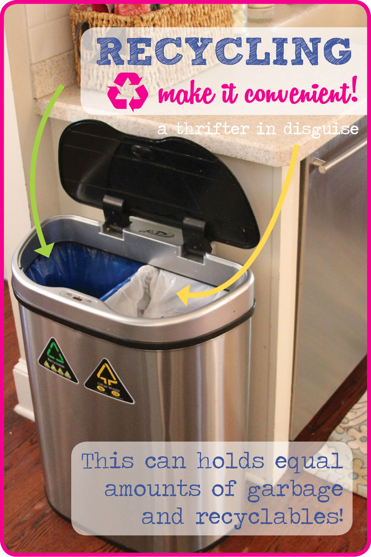 Getting Kids to Recycle More with thrifterindisguise.com