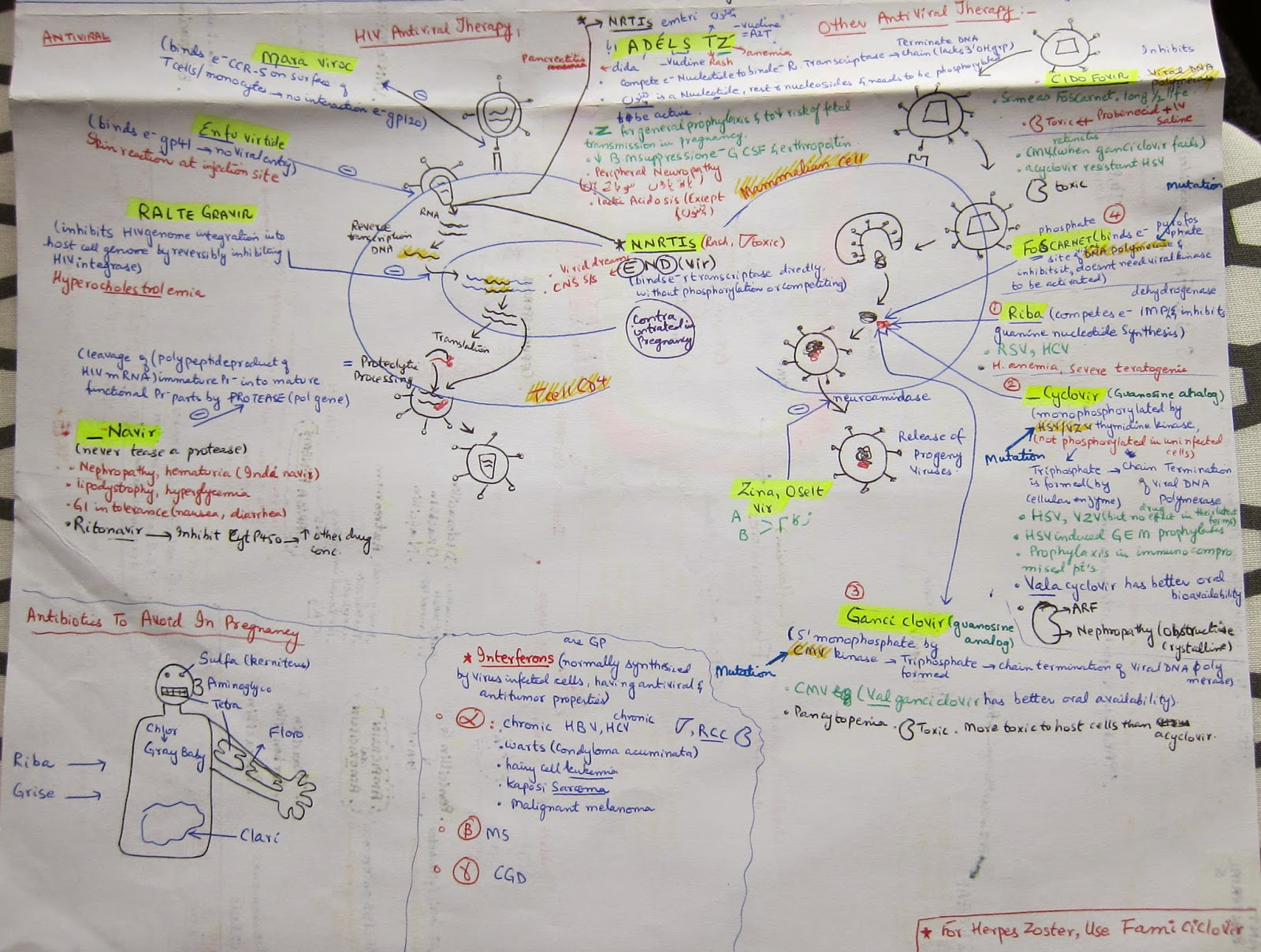 microbiology notes Find great deals on ebay for microbiology notes shop with confidence.