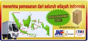 MELAYANI INDONESIA