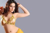 Arjumman, Mughal, -, New, Siren, of, Bollywood