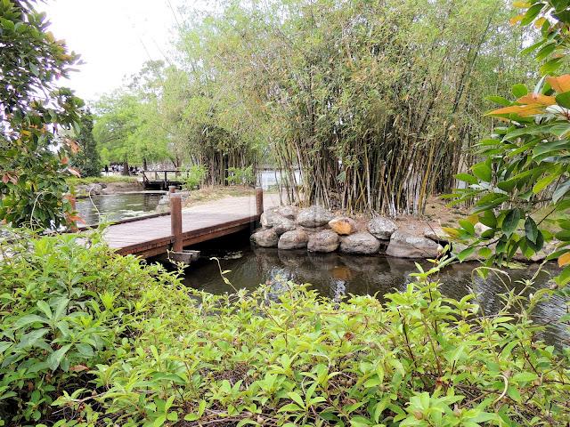 Bamboo Oasis