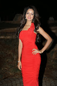 Glamorous Shanvi latest photos in Red-thumbnail-8