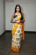 Lavanya Tripathi glam pics in saree-thumbnail-7