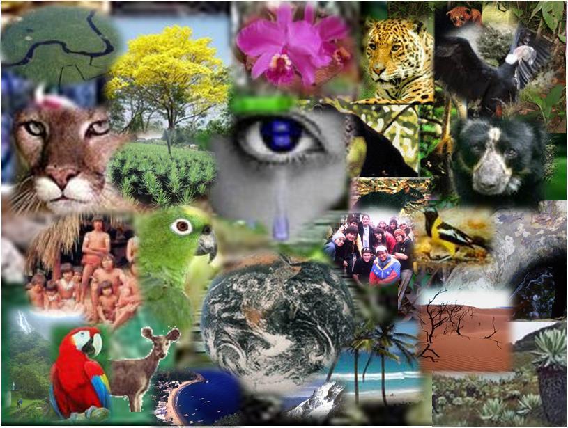 importancia biologicas: