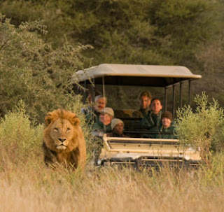 Holiday Fans travel the World RTW -family activities Budget Travel Amazing Right Safari Operator Safari Experience