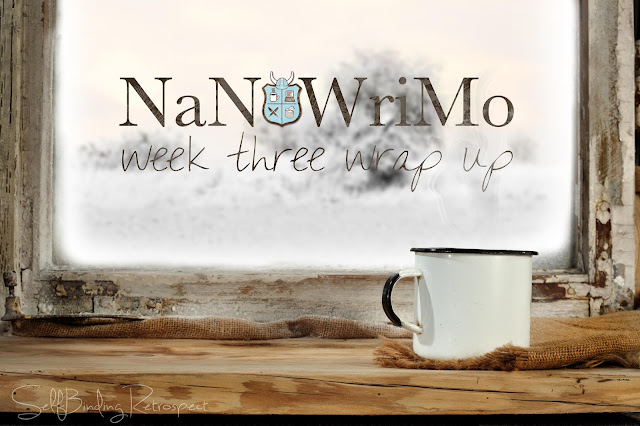 nanowrimo week three wrap up, update