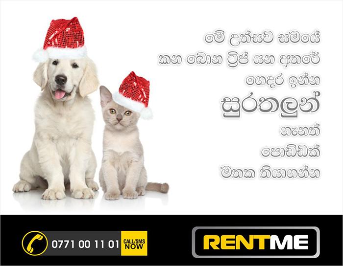 Multimedia Projector Rent Pet Care Sri Lanka Colombo Wedding