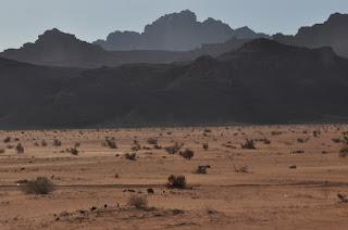Llanuras de Wadi Rum