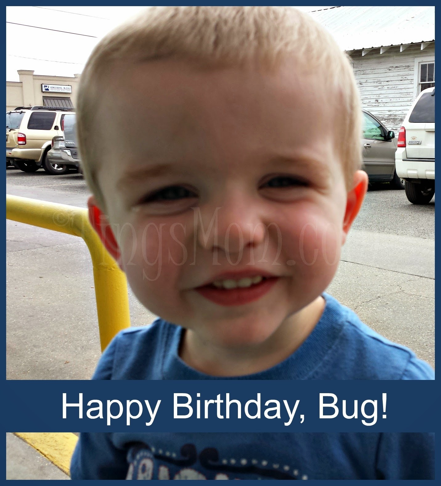 Happy Birthday, Bug | #bugturns2 #kidbirthday