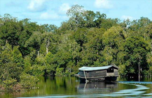 Taman Wisata Danau Sentarum Kalimantan 5