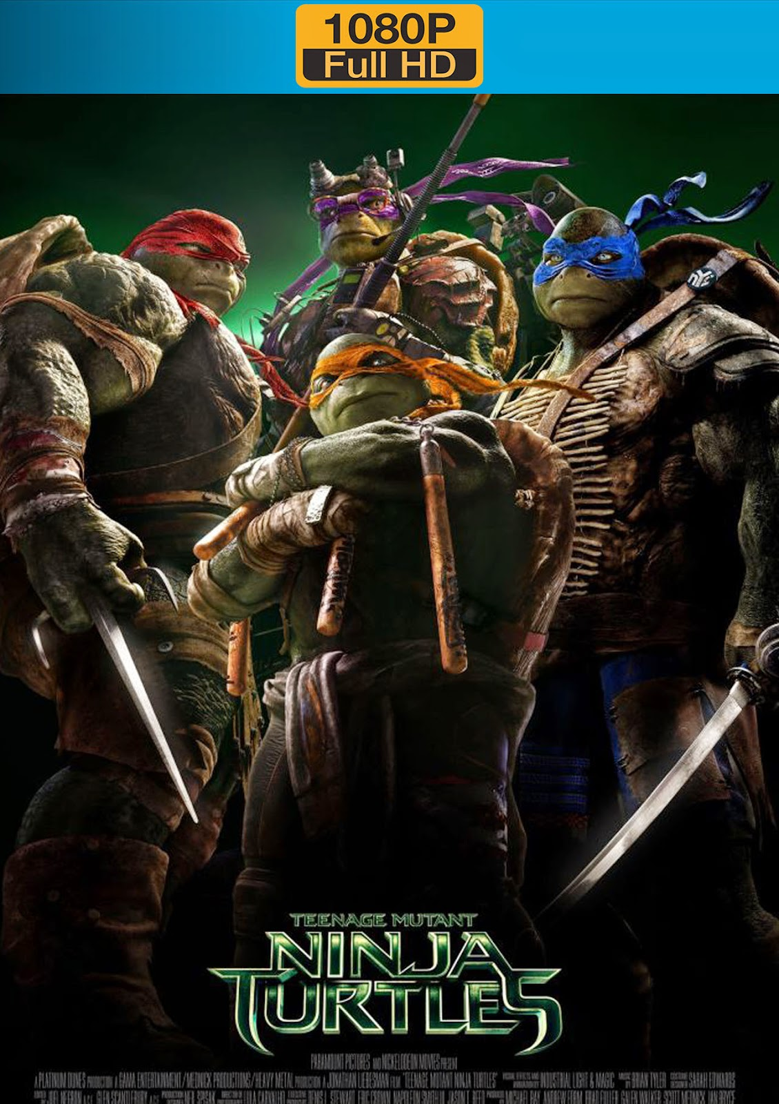 Teenage Mutant Ninja Turtles 2014 1080p Dual