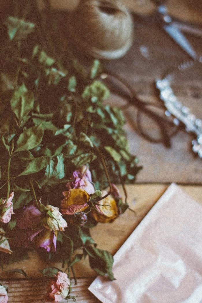 Novedades bonitas La Chimenea de las Hadas