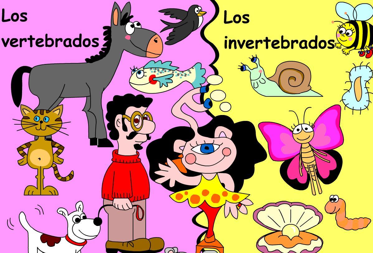 MINIESFERA: ANIMALES INVERTEBRADOS