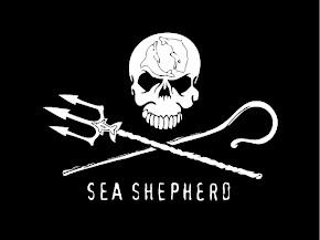 SEA SHEPHERD BRASIL