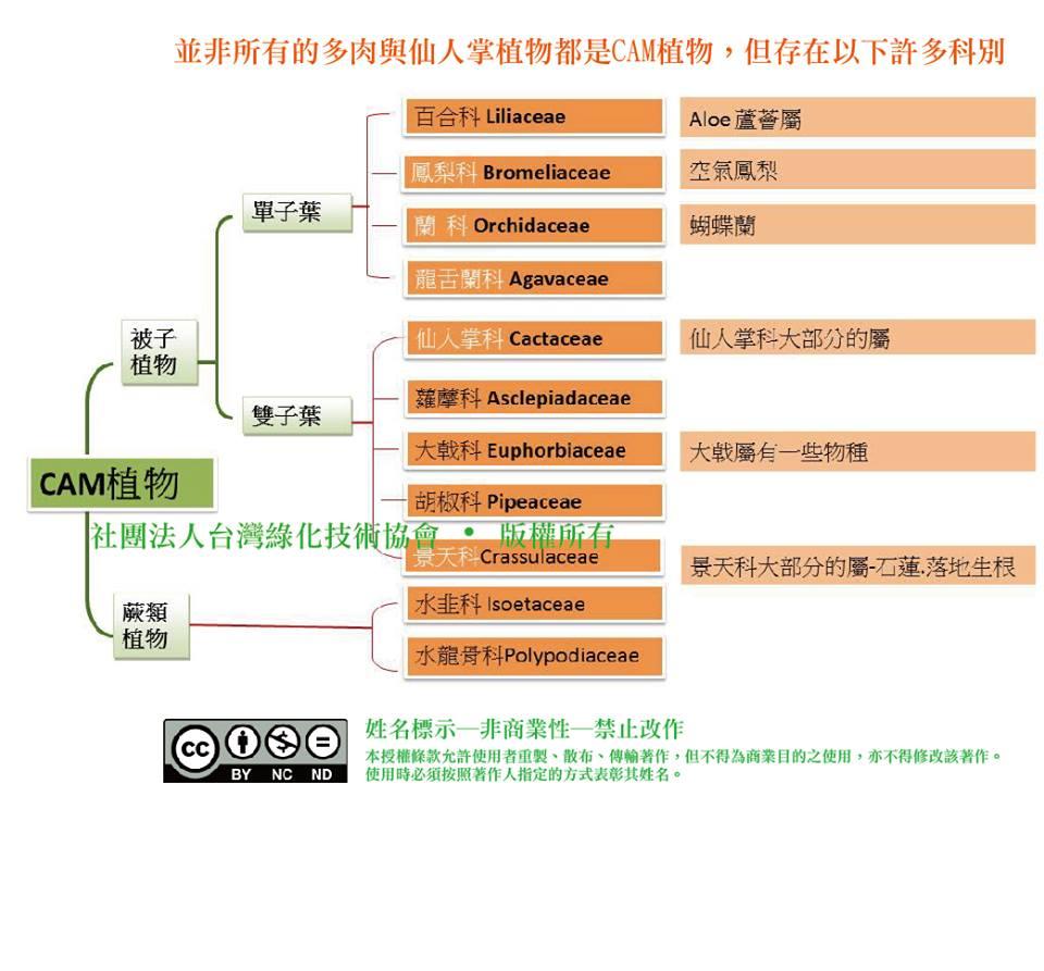 台灣綠化技術協會