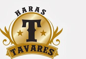 Haras Tavares