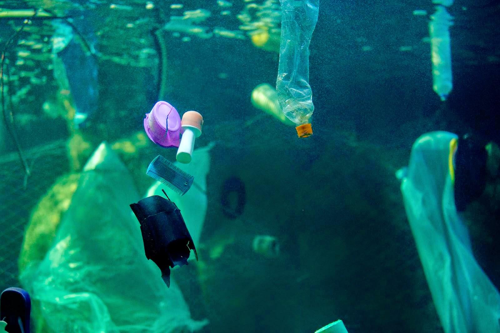 A exposição faz com que o visitante enxergue os impactos da poluição marinha e reflita sobre a importância do descarte correto dos materiais recicláveis