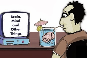 Brain Mind and Other Things