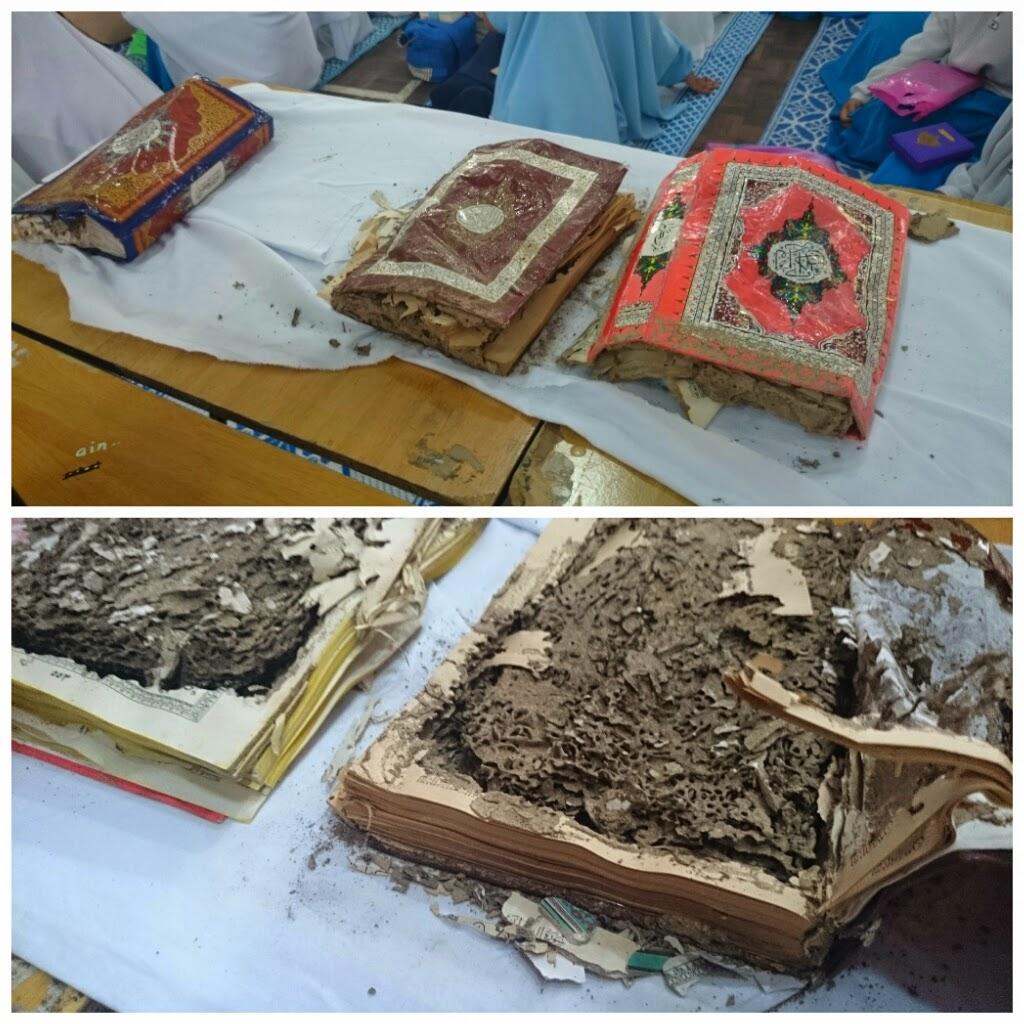 Al Quran dimakan anai anai
