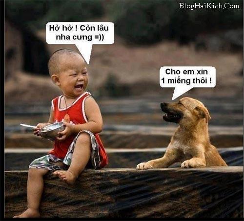 Hình ảnh vui con chó xin bé cho ăn với