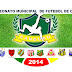 Campeonato Municipal de Futebol de Campo de Canguçu - Artilharia e Controle de Cartões