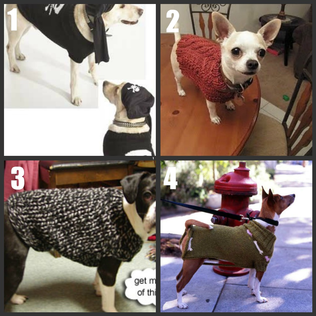 Dog Sweater to Knit/Crochet Roundup Part 2