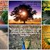 Hoy Debemos Compartir La Palabra De Dios -Lindas Y Hermosas Tarjetas Para Obsequiar