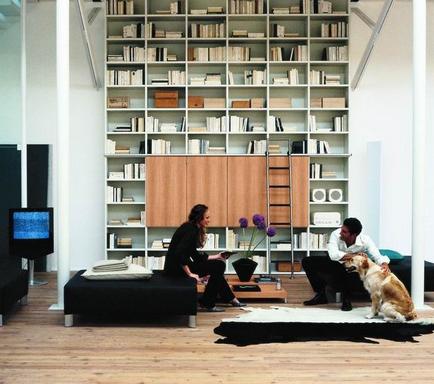 [Whole-wall bookshelf in proper interior]