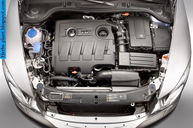 Skoda fabia car 2013 engine - صور محرك سيارة سكودا فابيا 2013