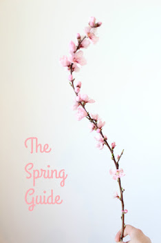 the spring guide