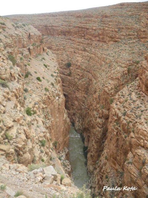 marrocos - Na Terra do Sol Poente - Viagem a solo por Marrocos - Página 2 IMGP0347