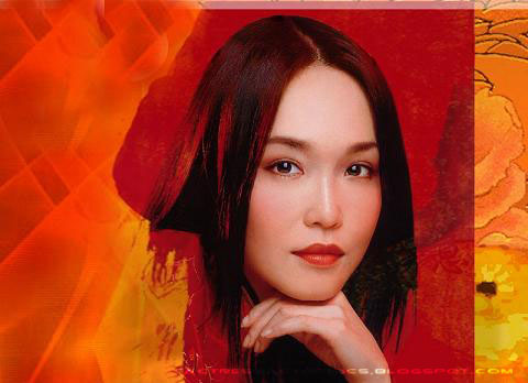 Singapore Actress Picture on Actress Actor Pics  Singapore Top Actress Fann Wong Photo