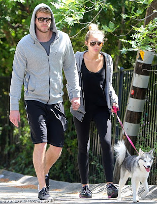 Miley Cyrus  Boyfriend on Hollywood Stars  Miley Cyrus With Her Boyfriend Liam Hemsworth In